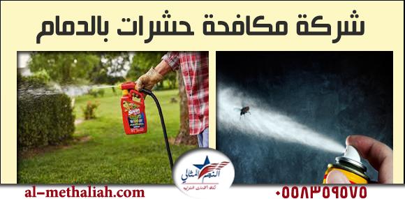 افضل شركات تسليك المجاري بالمنطقة الشرقية 0558359575 | النجم المثالي -مكافحة-حشرات-بالدمام